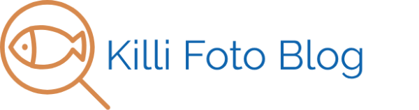 Killi Foto Blog